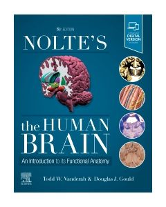 Nolte's The Human Brain