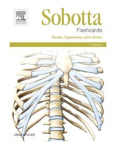 Sobotta Flashcards Bones  Ligaments  and Joints